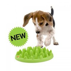 Best Dog Toys Reviews Top 10 Buying Guide 2019