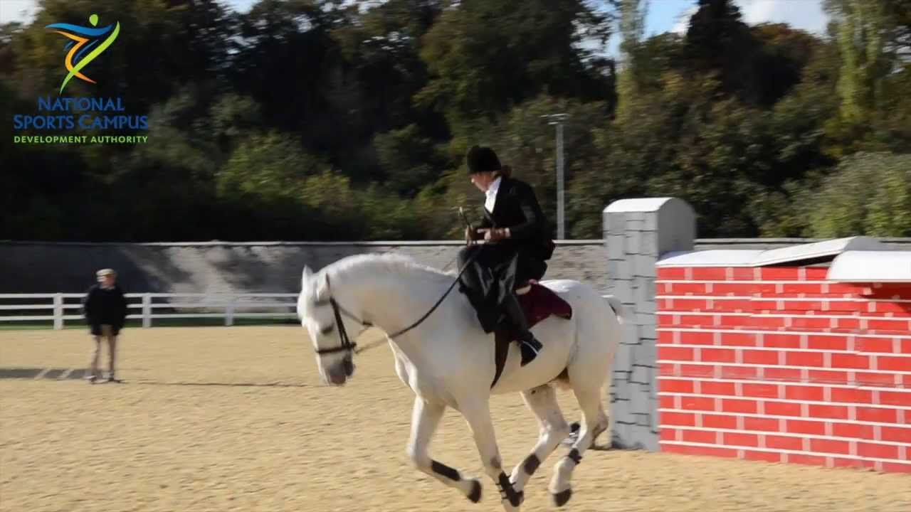 Susan Oakes World Record National Horse Sport Arena Jumping