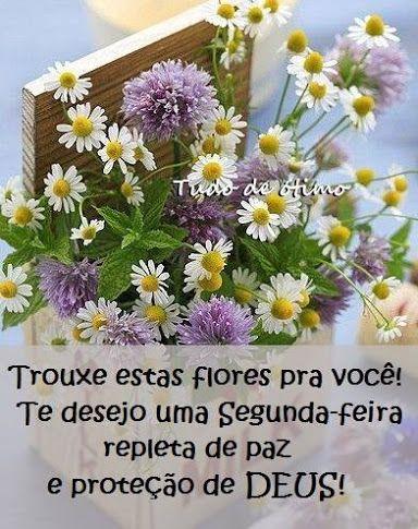 Angel Santos Google Com Imagens Flores Bonitas Flor De
