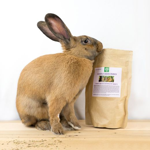 Huge Discount Coupon Codes For Small Pet Select Heavenly Green