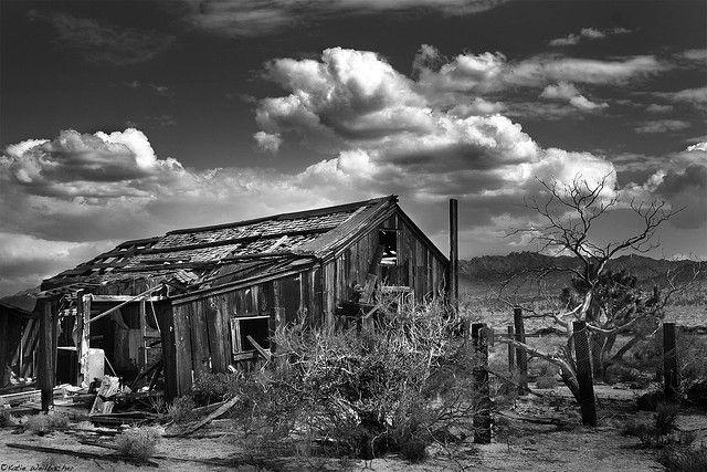 Abandoned In The Mojave Desert