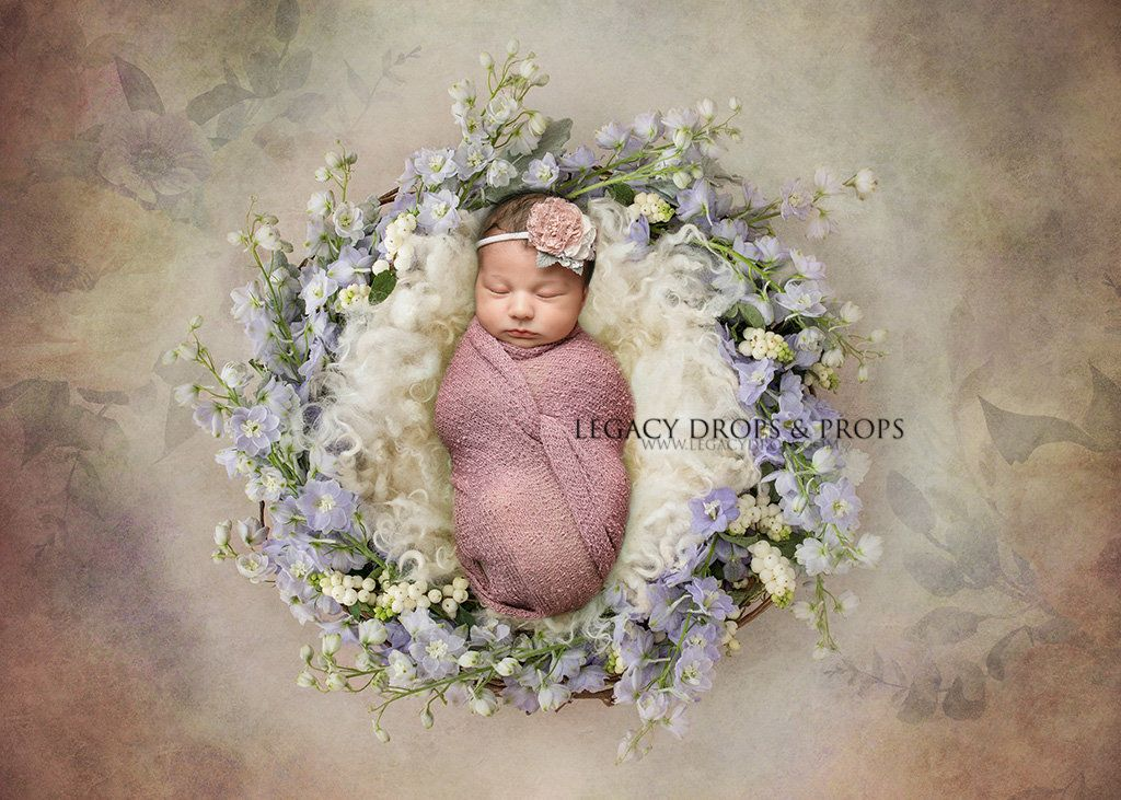 Elegant Dream - Newborn Digital Photography Backdrop Background for Photographers