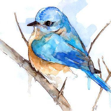 104 Great Watercolor Tattoo Designs Bluebird Painting Watercolor Bird Watercolor Painting Etsy