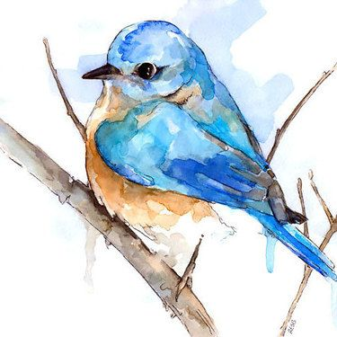Simple Watercolor Bluebird Tattoo Design Watercolor Bird Blue