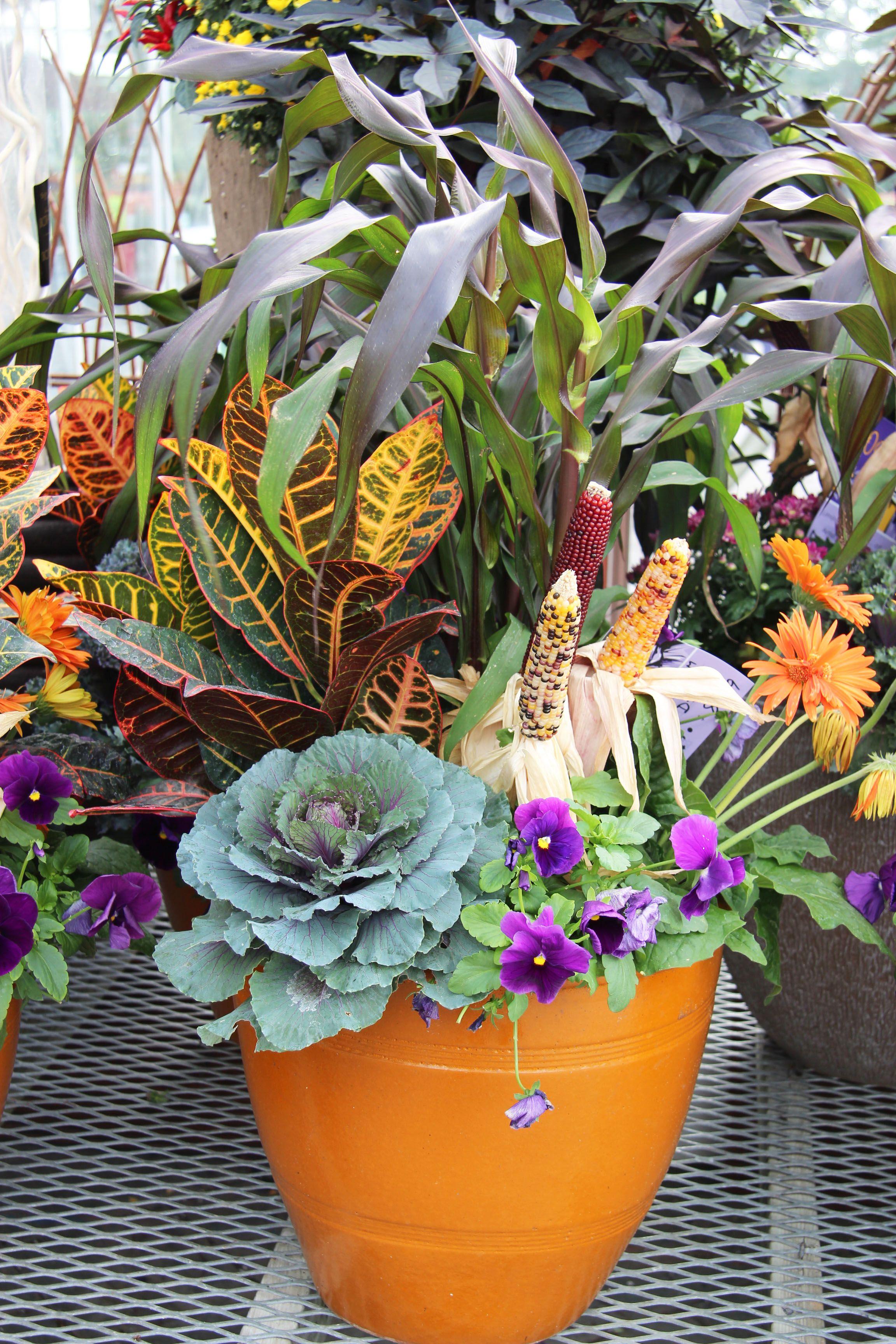 Fall Planter Pansies Ornamental Cabbage Dried Corn 400 x 300