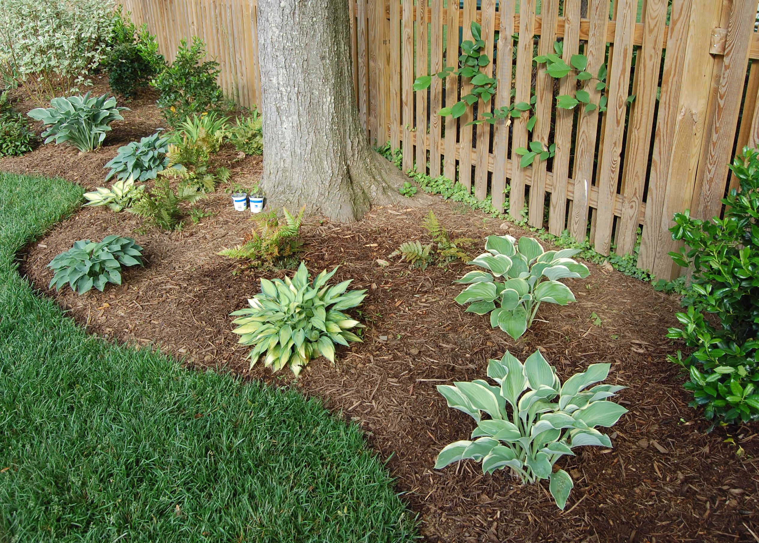 backyard landscaping category for gorgeous landscaping around - Flower Garden Ideas Around Tree