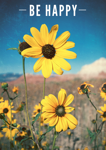 be happy as a daisy