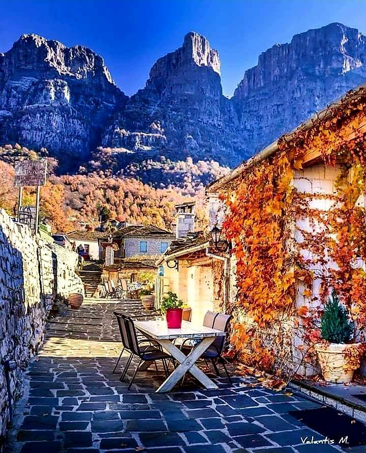 Papigo #ioannina-grecce Papigo #ioannina-grecce