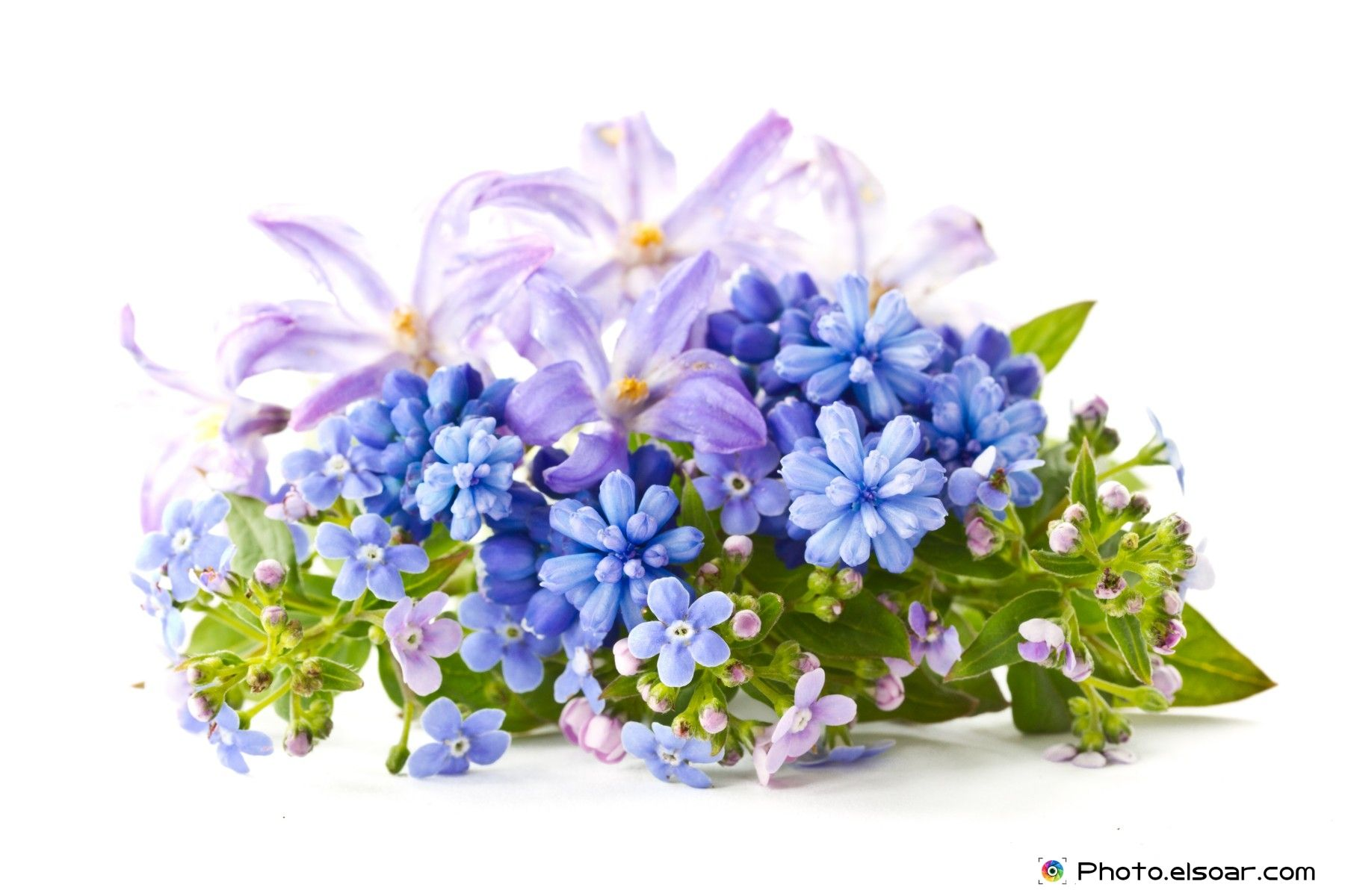 Most Beautiful Bouquet Of Flowers 25 Beautiful Flower Bouquets For