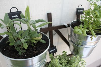 Hanging Potted Herb Garden With Instructions On Www