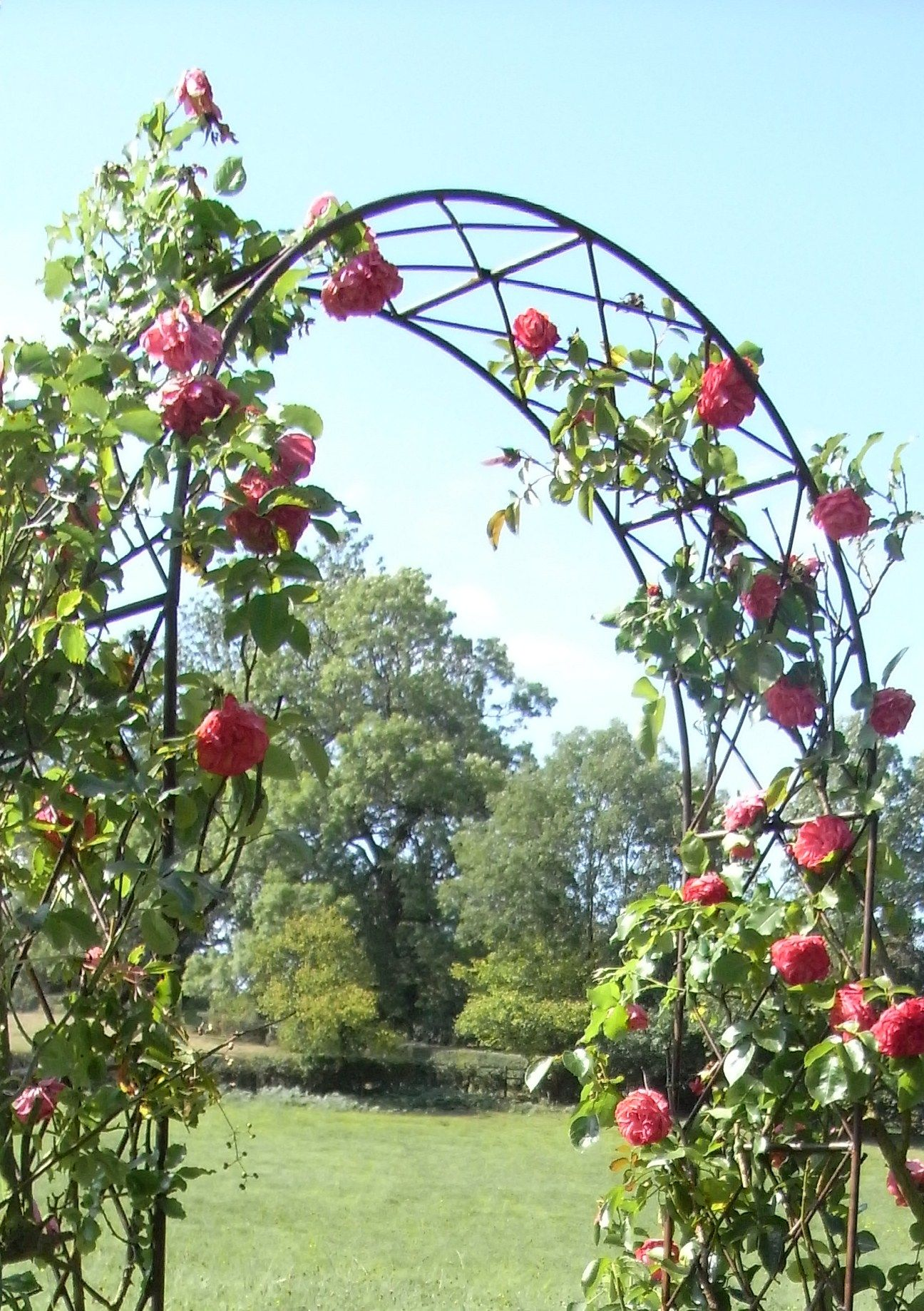 Leanders lovely rusted iron Rose Arch has a traditional