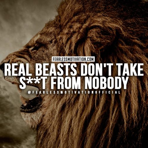 Encouraging Success Quotes: 30 Of The Best Lion Quotes In Pictures