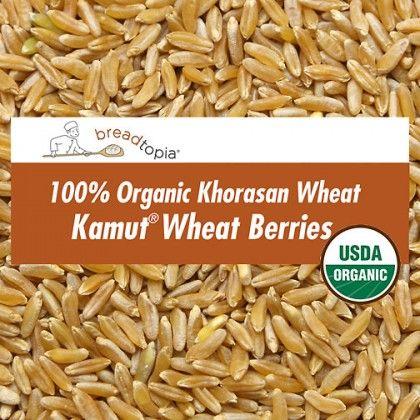 Kamut Wheat Berries Wheat Berries Khorasan Wheat Whole Grain