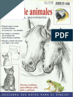 Dibujo Facil Dibujos De Animales Jpr504 Drawing Book Pdf Drawing Lessons Book Art