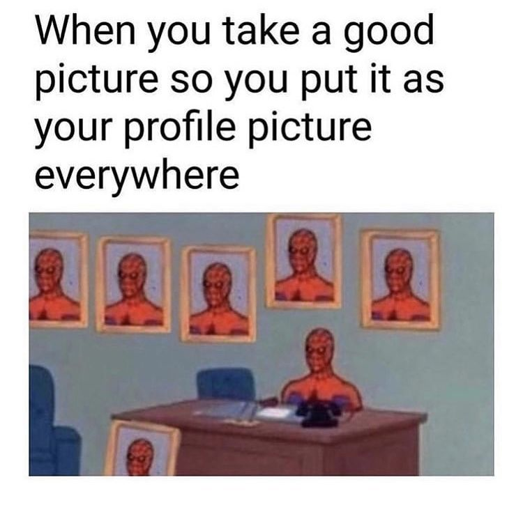 When You Take A Good Profile Picture Really Funny Memes Funny Relatable Memes Stupid Funny Memes