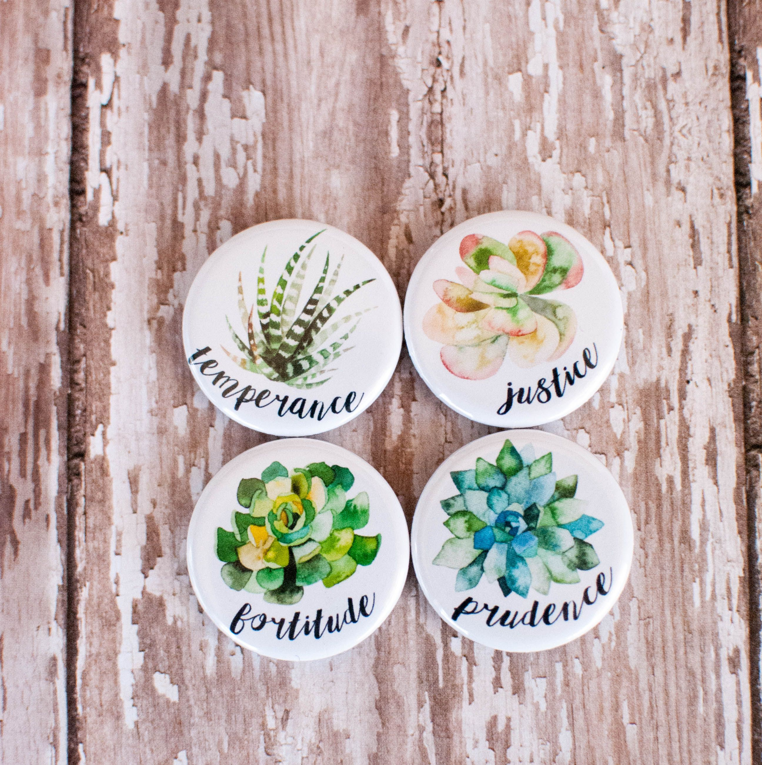 Four Cardinal Virtues Set Of Succulent Magnets With