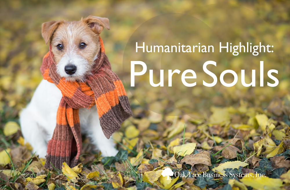 Humanitarian Highlight 2 20 2020 Pure Souls People In Need Habitat For Humanity Habitat For Humanity Restore