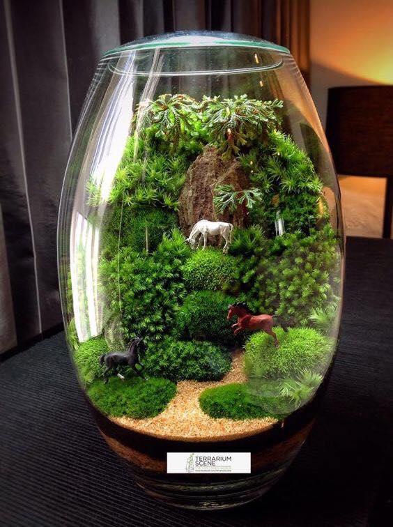Inspiration 15 amazing terrarium ideas with moss, ferns