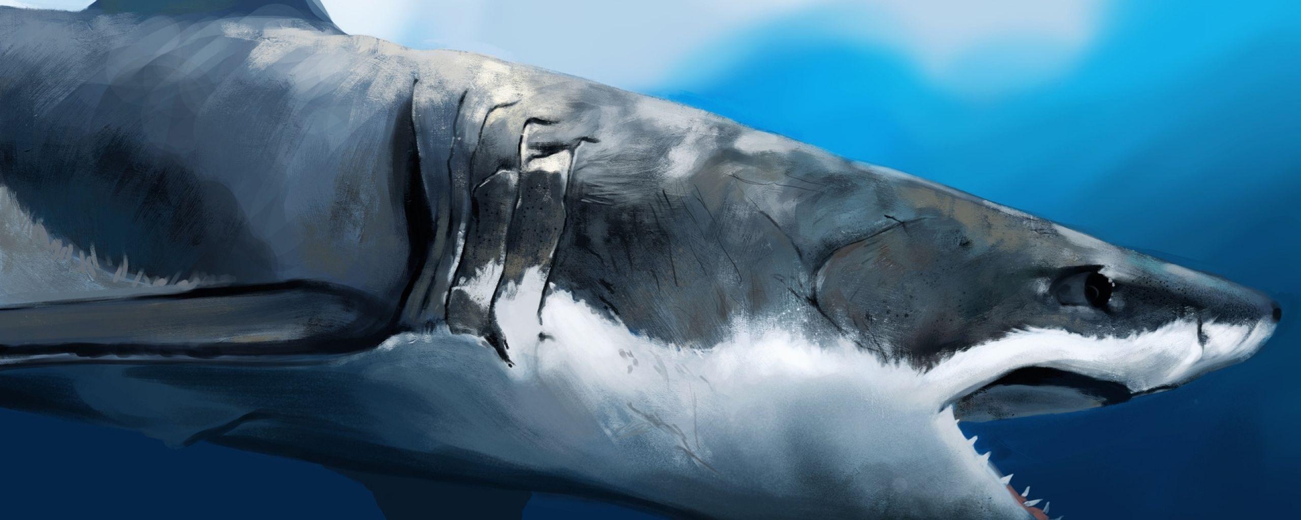 Shark Wallpaper Deep Ocean Shark Wallpaper Gallery Wallpapers 4k
