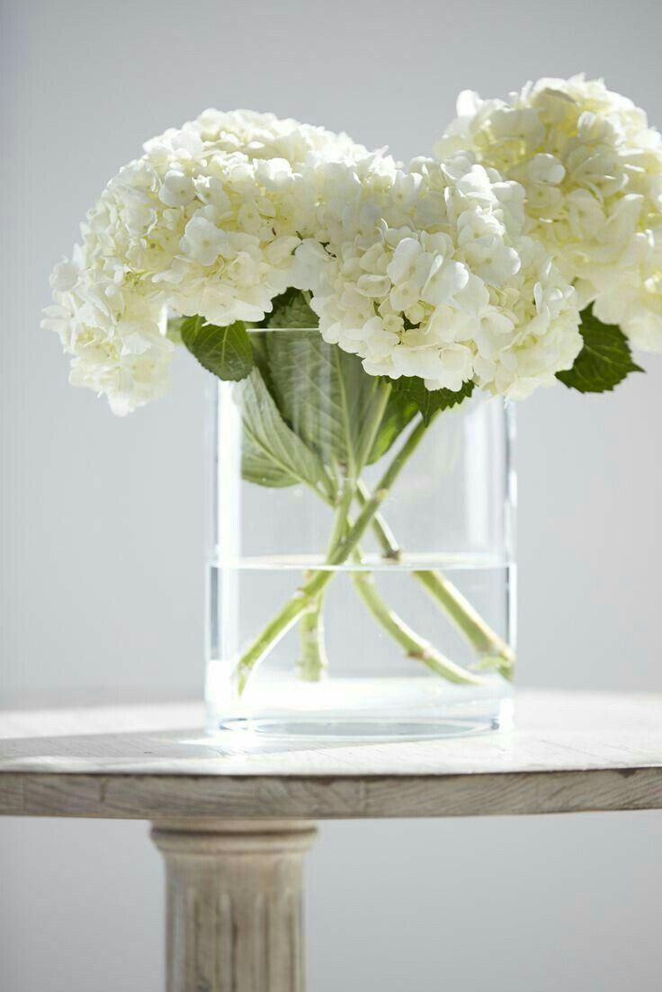 White Hydrangea Arrangement In Clear Base Flower Arrangements