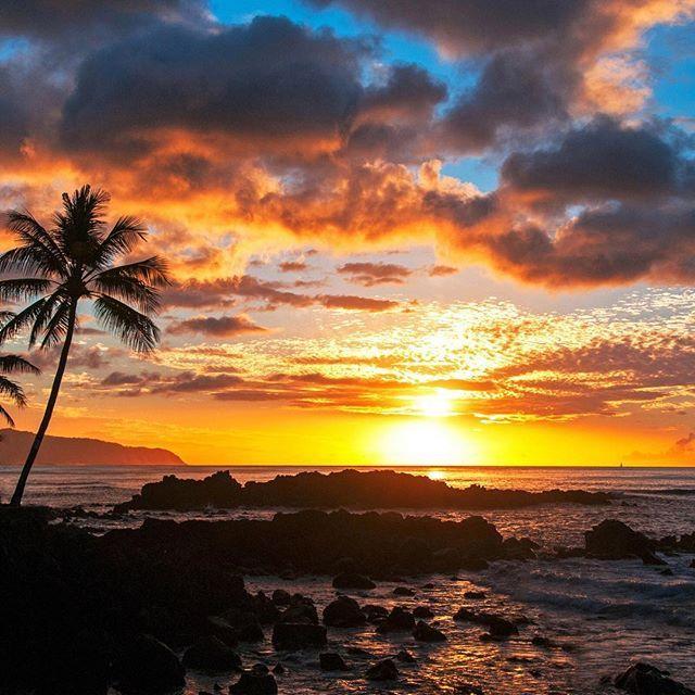 #hawaii #paradise #clarklittle 🆑