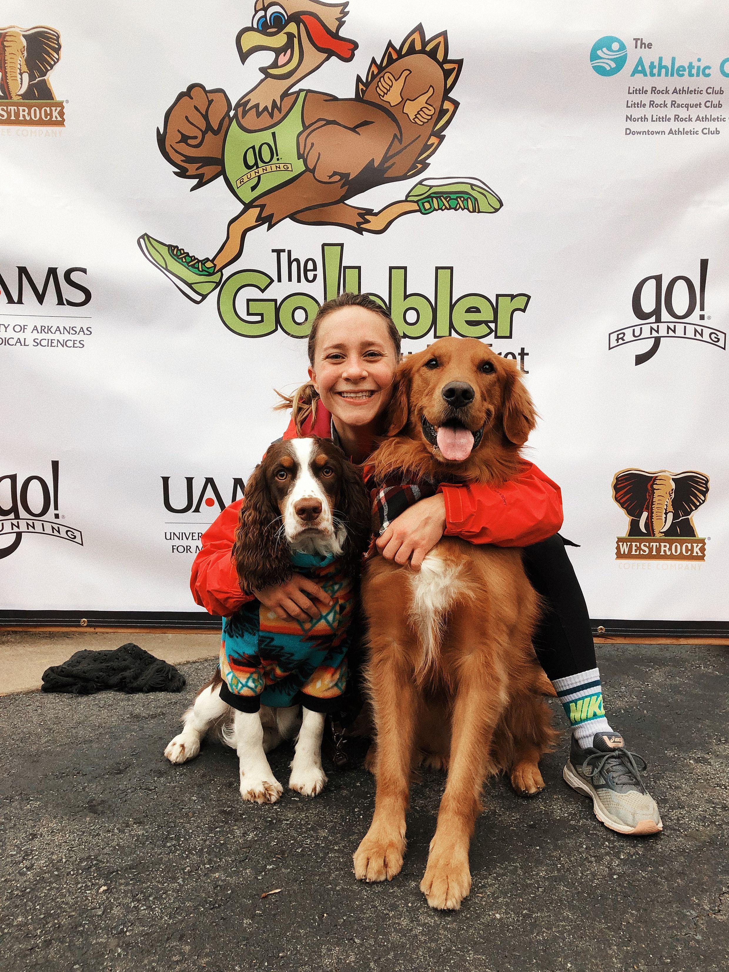 Red golden retriever puppies arkansas