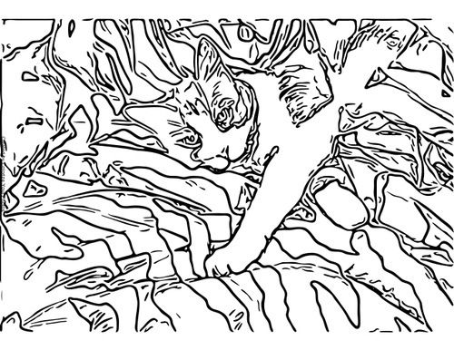 Free Cat Art Coloring Pages Animal Coloring Pages Pattern Coloring Pages Coloring Pages