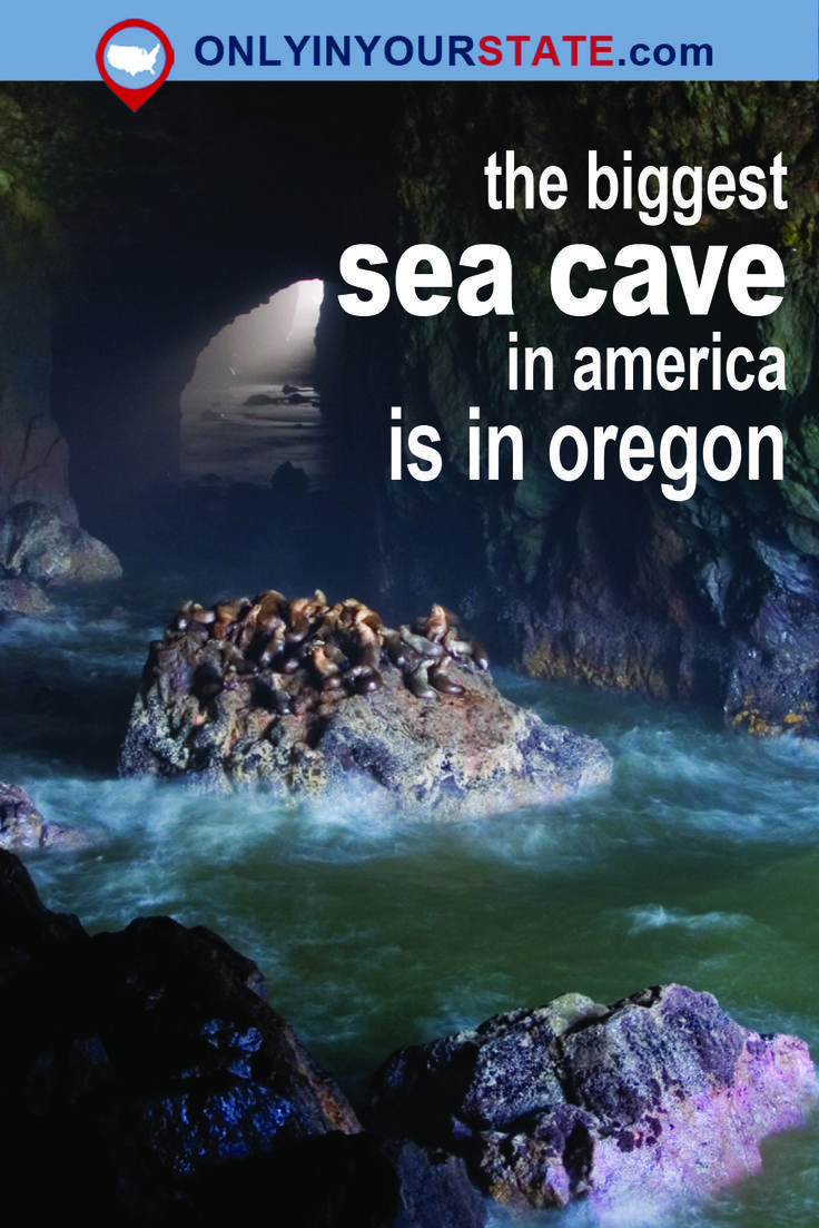 The Biggest Sea Cave In America Is Located In Oregon, And You'll Want to Visit It