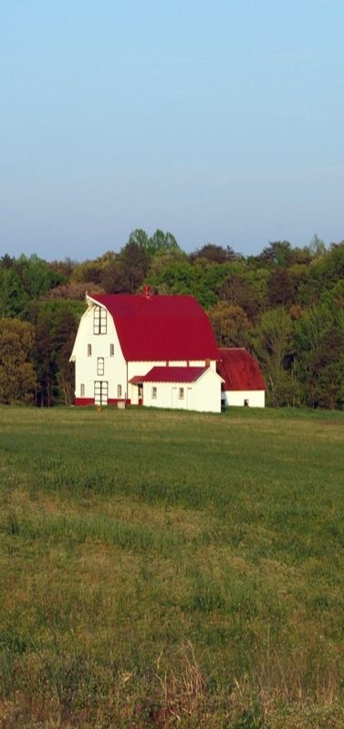 Best White Barn Red Roof Rh Old Barns Red Barns 400 x 300