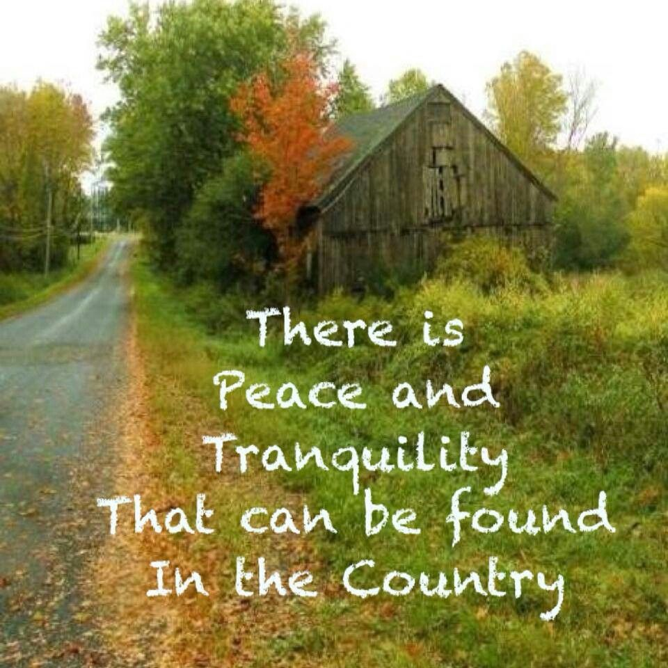 Country Life Quotes And Sayings Fair Country Lifei Miss Itcan't Wait Til It Warms Up And We Can Go