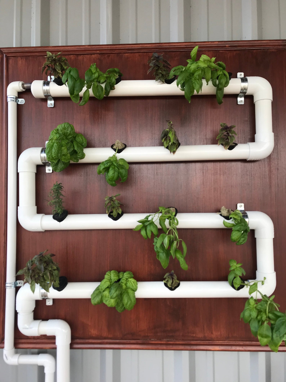 Personalized Hydroponic System/ Indoor and Outdoor Garden
