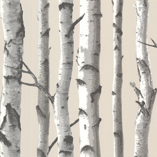 Chesapeake Tuxbury Beige Birch Tree Paper Strippable