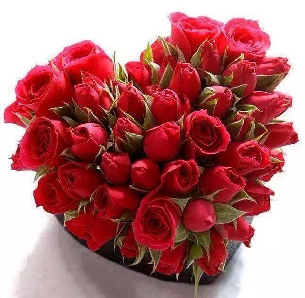 Afrodita On Red Rose Bouquet Red Roses Rose Bouquet
