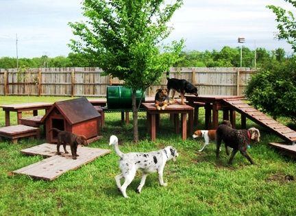Ideen fur kleine hinterhofe mit hunden - Gartenzaun fur hunde ...