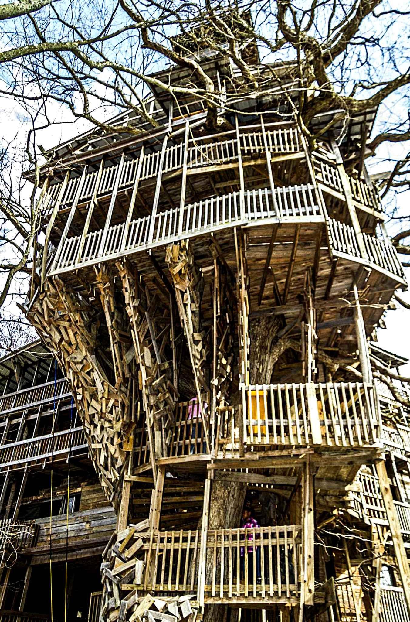 cette maison se trouve a crossville dans le tennessee il s agit de la plus grande maison en arbre jamais realisee le penseur completement fou de ce projet