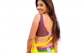 Sexy Richa Gangopadhyay Saree Wallpaper