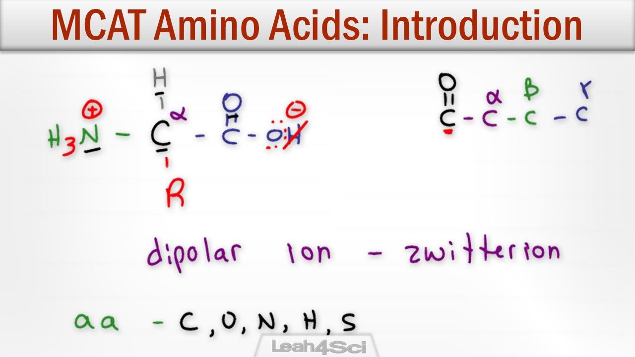 Amino Acids Intro To Structure Charge Classification And Reactions