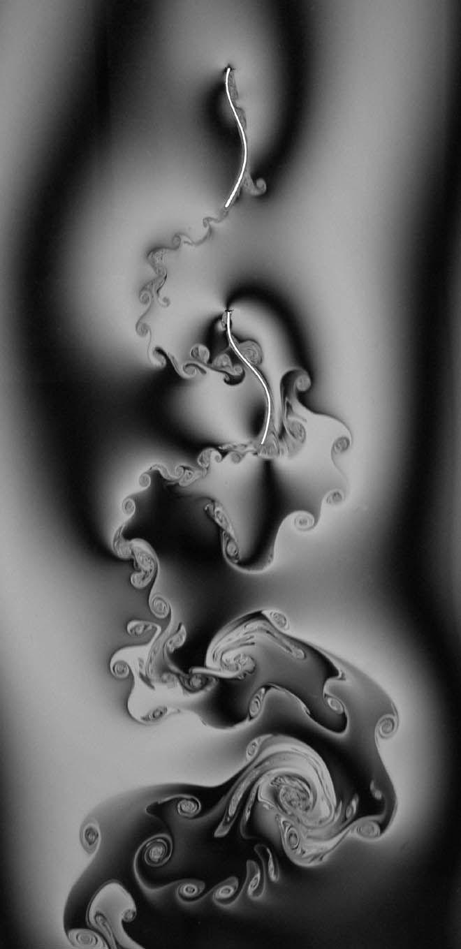 The Weird and Beautiful World of Fluid Dynamics