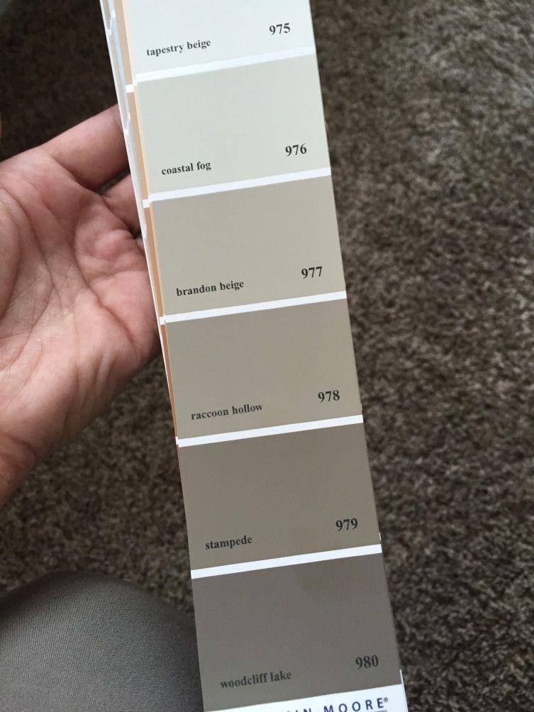Brandon Beige Strip Paint Colors For Home Beige Color Palette Family Room Makeover