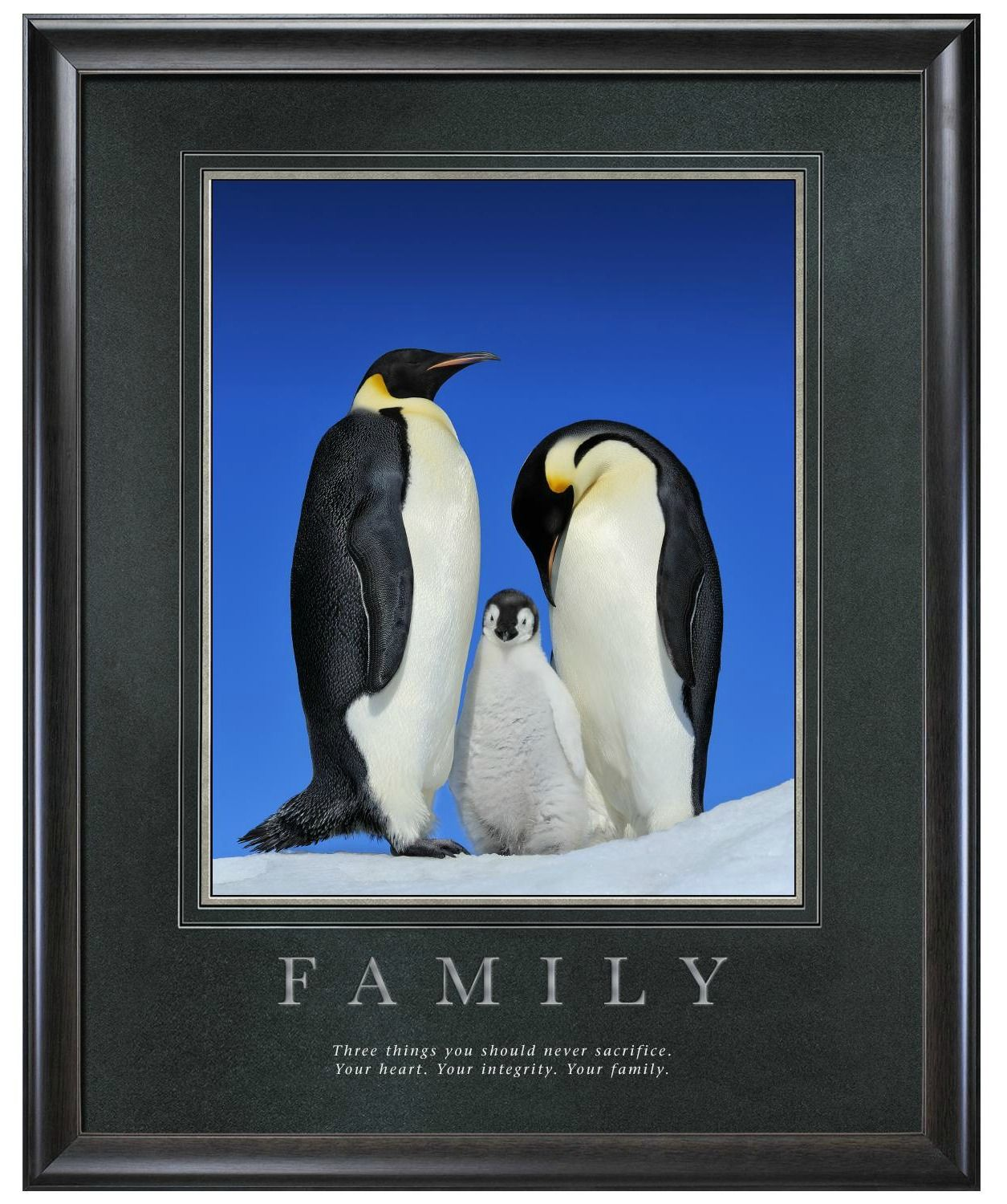 Family penguins motivational poster three things you should family penguins motivational poster three things you should never sacrifice your heart your jeuxipadfo Image collections