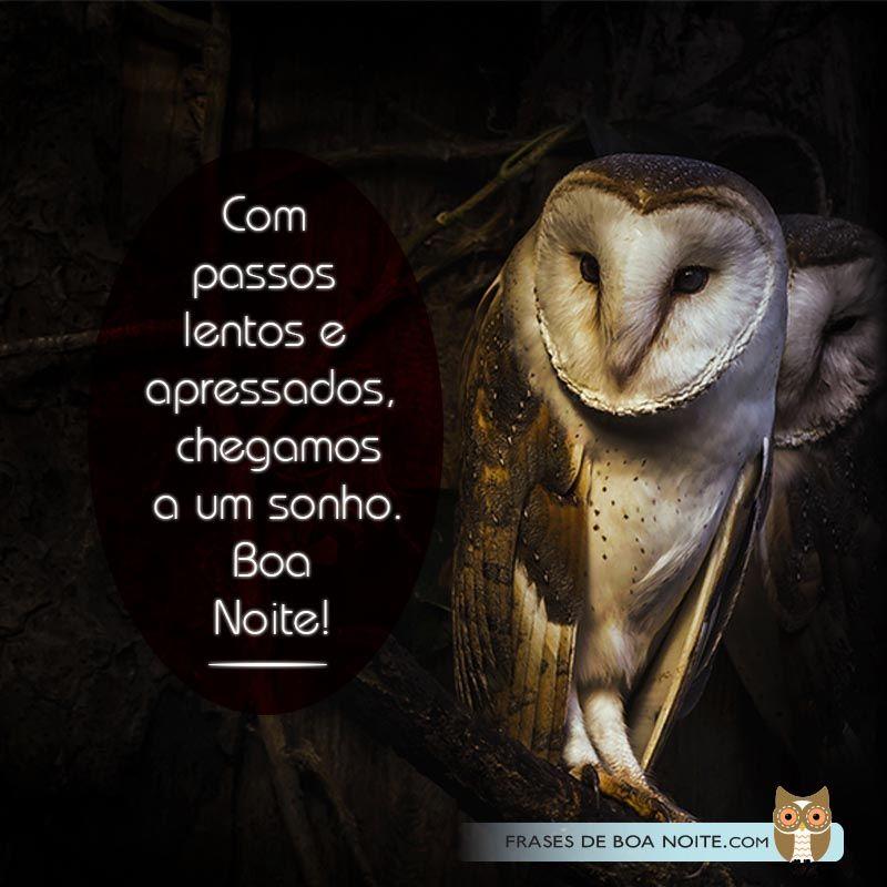 Imagens Bonitas De Boa Noite