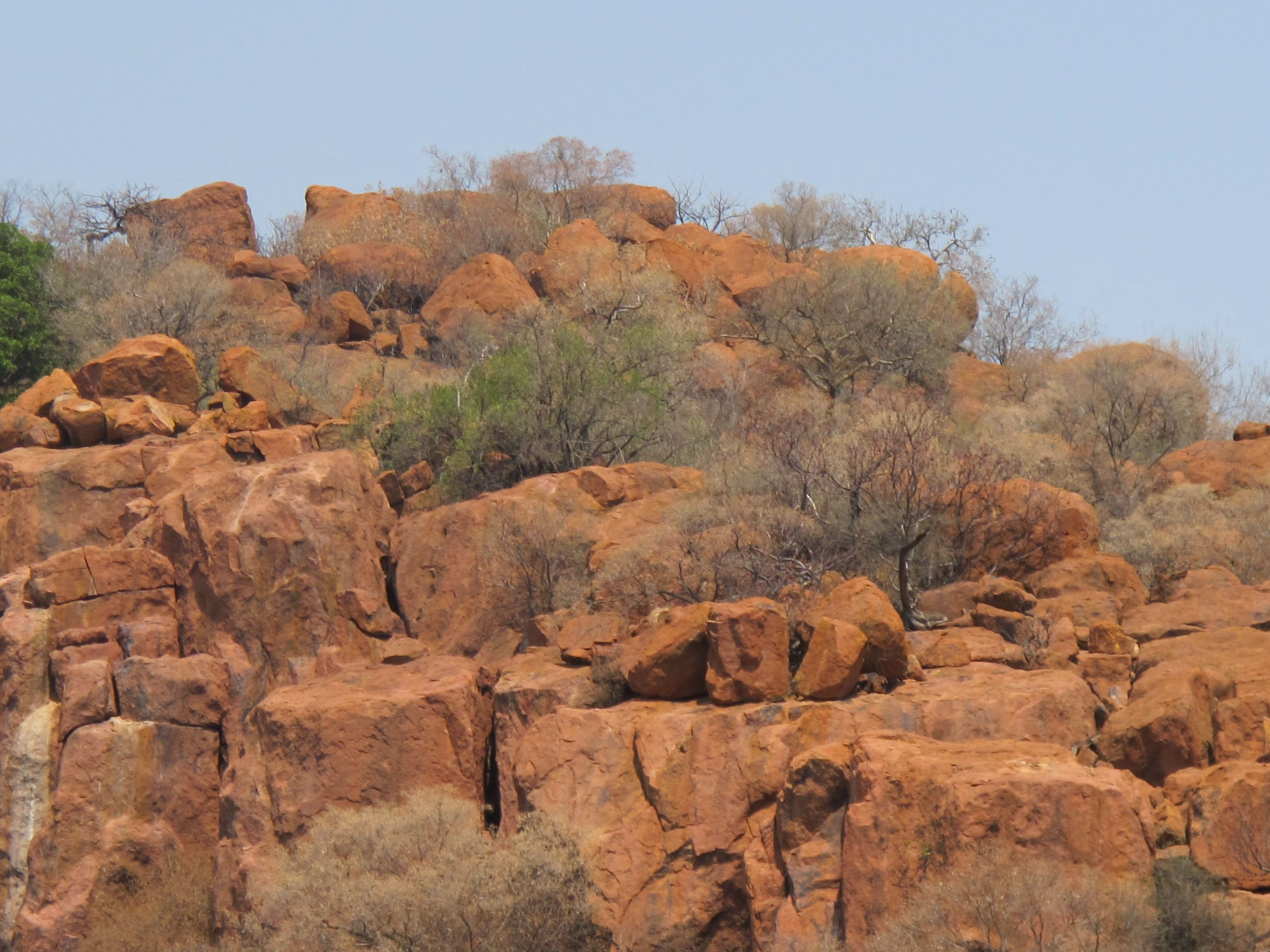 Pilanesberg Leopards Like To Hide In These Rocks But We Didn T See Any