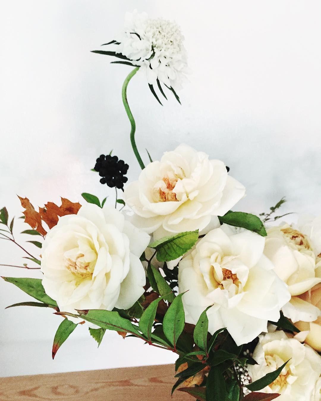 Creamy details   #wildgreenyonder #gardenroses #scabiosa #fallflowers #viburnum #bouquet #florist