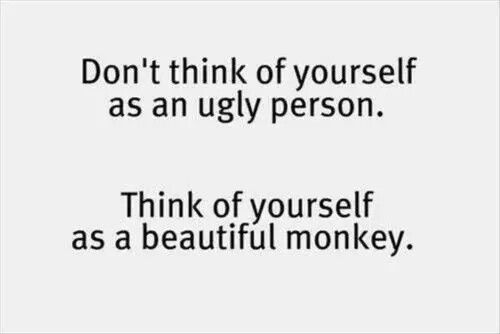 Quotes ugly beautiful monkey phrases funny fun quotes don t think of yourself as an ugly person think of yourself as a beautiful monkey but at least when im an ugly person i dont get hassled solutioingenieria Images