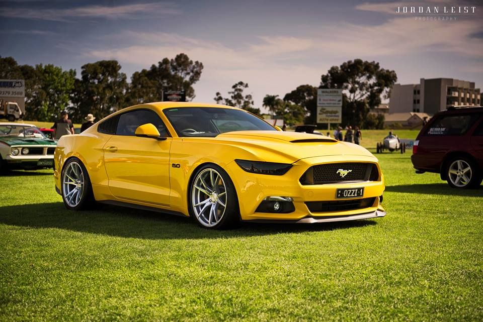 Yellow Ford Mustang New Ford Mustang Yellow Mustang New Mustang