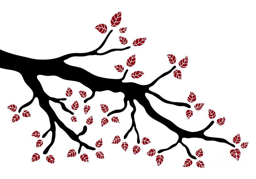 Tree Branch By Frank Tschakert