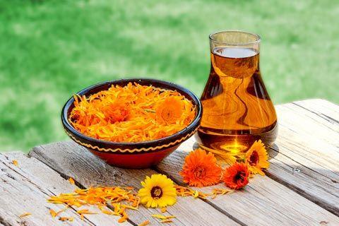 Rezept: Calendula-Massageöl selber machen – Ringelblumen-Ölauszug