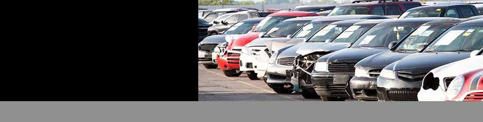 Iaa Fast Search Insurance Auto Auctions Autos Post Insurance