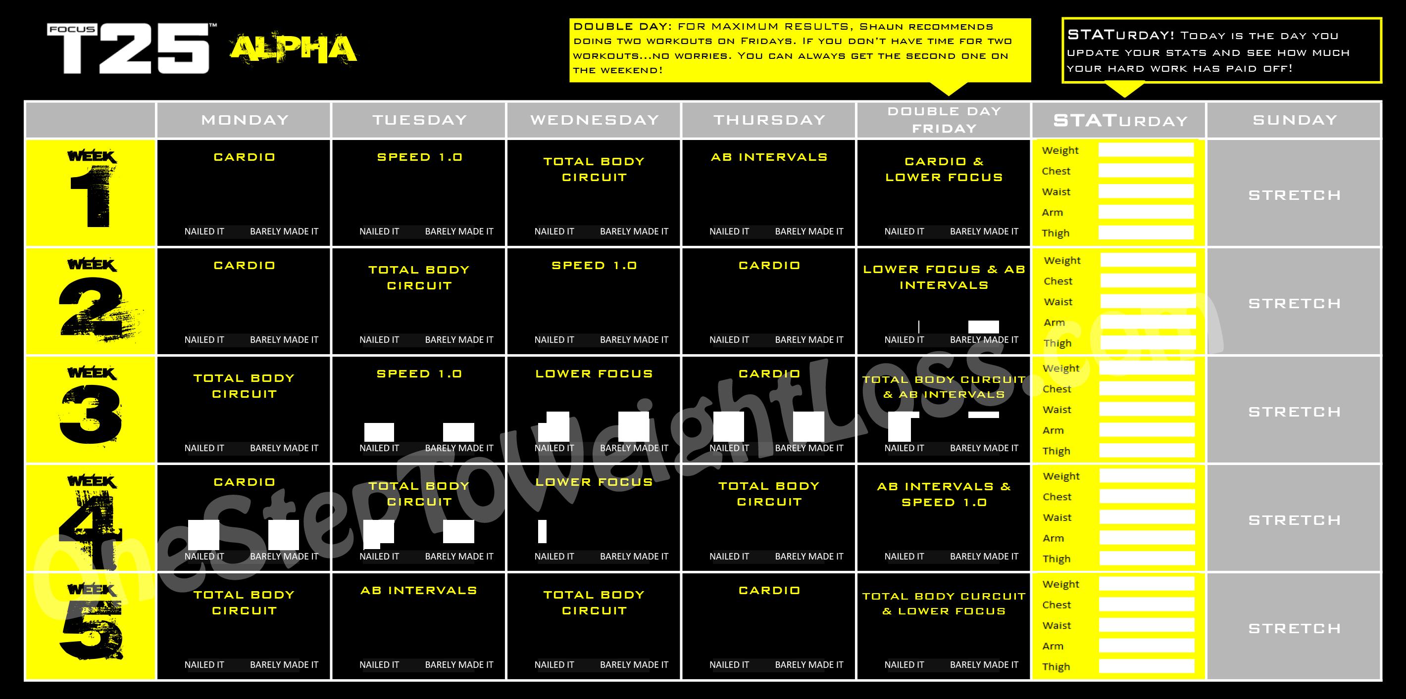 Focus T25 Workout Schedule Alpha Phase