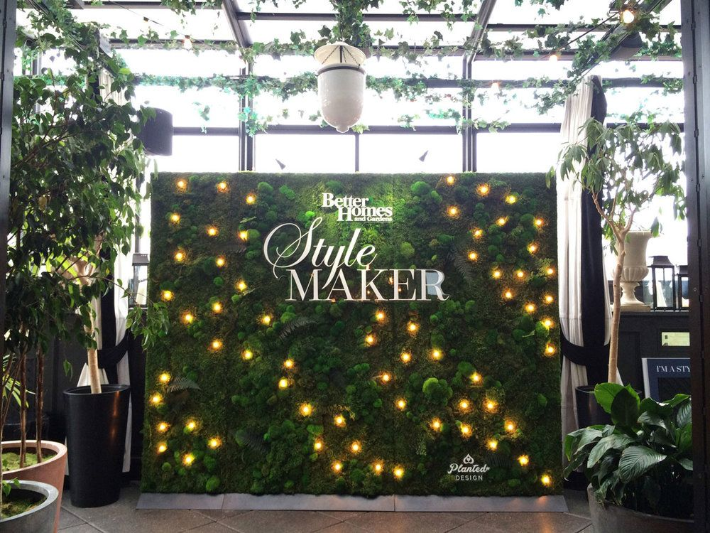 Better Homes And Gardens   Rental Moss Wall